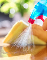 Surface Disinfectants Sourcing and Procurement Report by Top Spending Regions and Market Price Trends - Forecast and Analysis 2020-2024